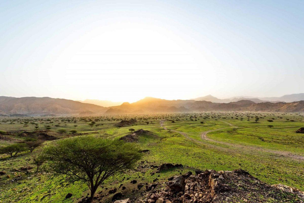 RAS AL KHAIMAH TOURISM DEVELOPMENT AUTHORITY UNVEILS SEVERAL SUPPORT INITIATIVES AIMED AT TOURISM INDUSTRY