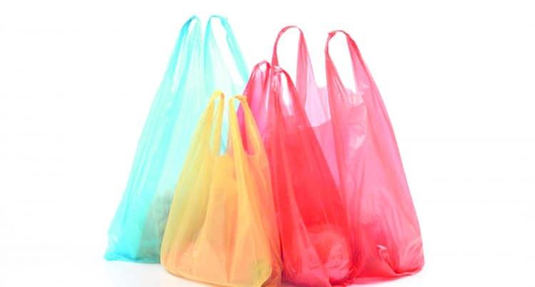 No more plastic bags in Ras Al Khaimah starting next year