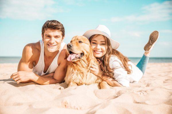 BM Beach Resort – A Dog Friendly Haven