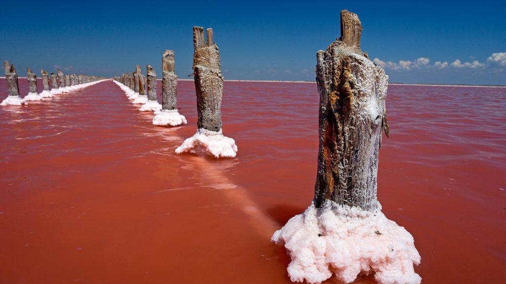 Sasyk-Sivash Lagoon, Russia