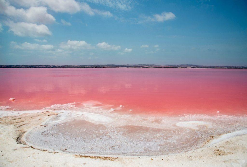 Las Salinas de Torrevieja, Spain Pink lake