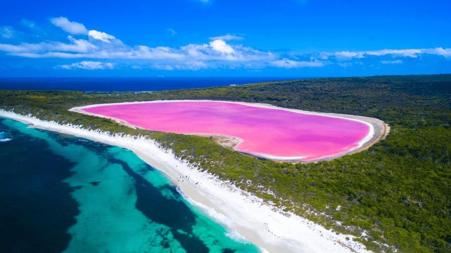 Lake Hilier Australia Pink lake