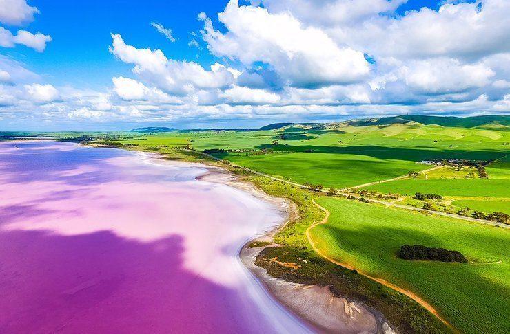 Lake Bumbunga, Australia Pink Lake