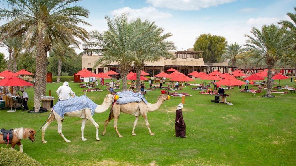 Bab Al Shams Picnic Brunch